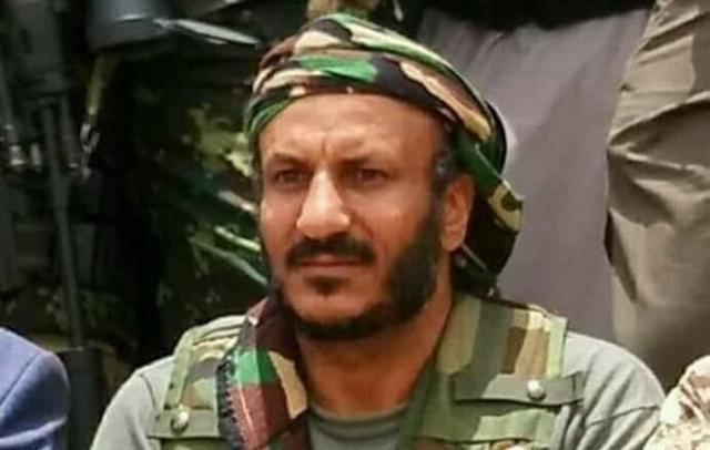 حقيقة تولي طارق صالح قيادة العمليات العسكرية في جبهات الساحل الغربي
