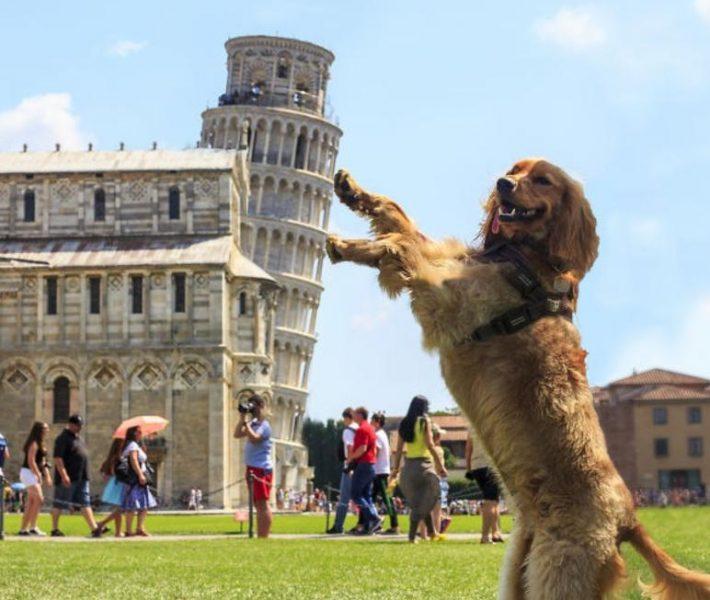 شاهد اغرب الصور التي تم التقاطها لبرج بيزا المائل في ايطاليا