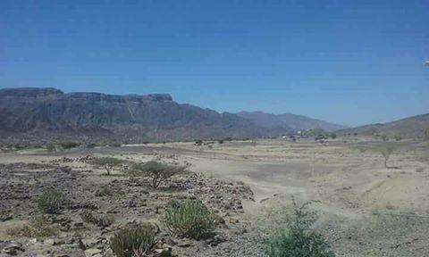 تعز: مصرع 5 حوثيين بينهم قيادي والجيش يسيطر على مواقع جديدة في الكدحة