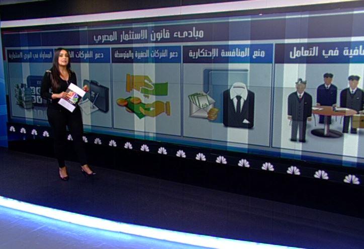 قانون الاستثمار المصري يخرج للنور.. فهل يفتح الطريق أمام الشركات الأجنبية؟