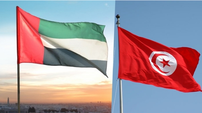 ليس في اليمن فقط.. أموال إماراتية قذرة لتدريب كتائب تونسية في معسكرات مصرية