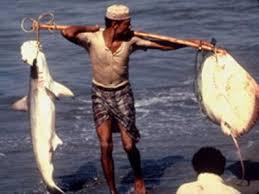 السلطات المصرية تفرج عن 10صيادين يمنيين