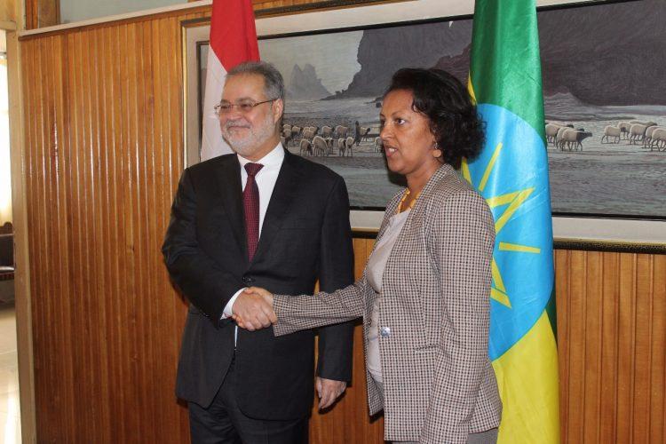 نائب رئيس الوزراء يصل الى العاصمة الاثيوبية لاجراء محادثات بشان مستجدات الوضع في اليمن