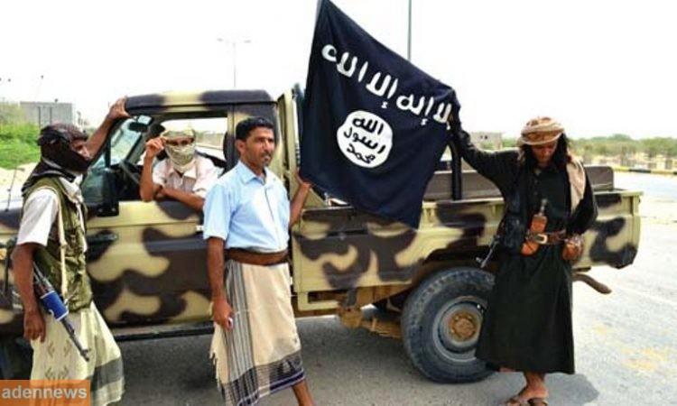 قوات النخبة الشبوانية تنفذ عملية مداهمة وتعتقل نائب أمير تنظيم القاعدة بمديرية حبان