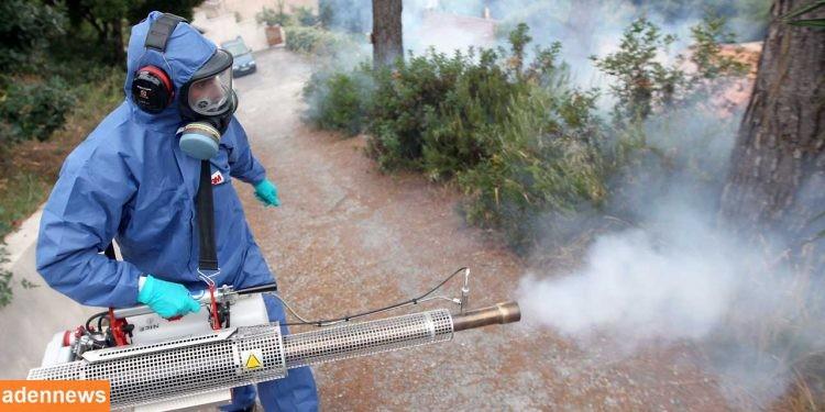 بدء المرحلة الثانية لحملة الرش الضبابي لمكافحة حمى الضنك في سيئون