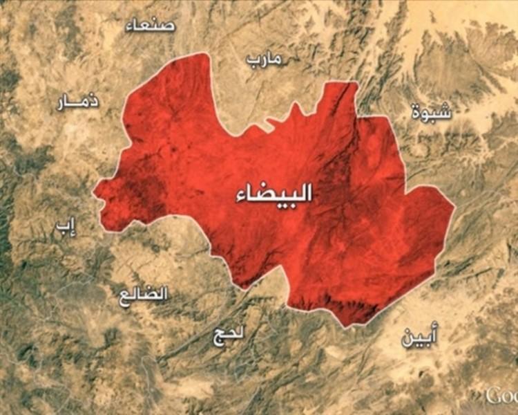 مصرع 6 الحوثيين بمواجهات مع المقاومة في البيضاء