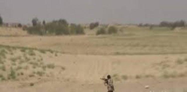 5 من مليشيا الحوثي يلقون مصرعهم وأسر سادس بمواجهات في جبهة ميدي
