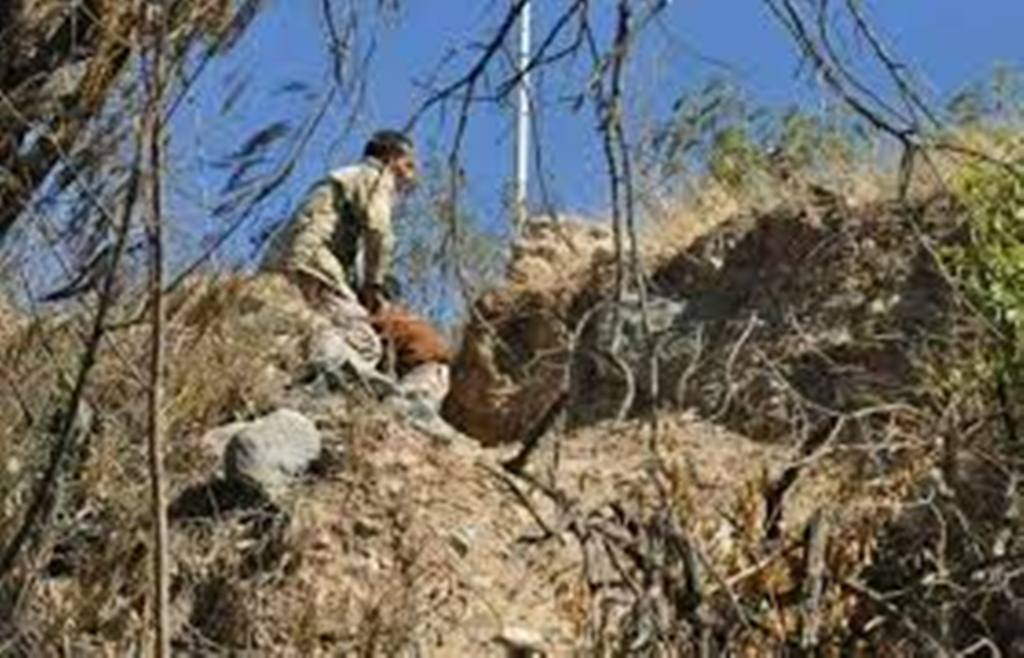 قوات الجيش الوطني في تعز تواصل تقدمها وتحرر تبة الجعشاء ومقتل 12 حوثيا في المواجهات