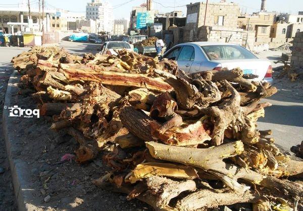 """""""الحطب والكراتين"""".. خيار اليمنيين في مواجهة ارتفاع أسعار الغاز المنزلي (تقرير )"""