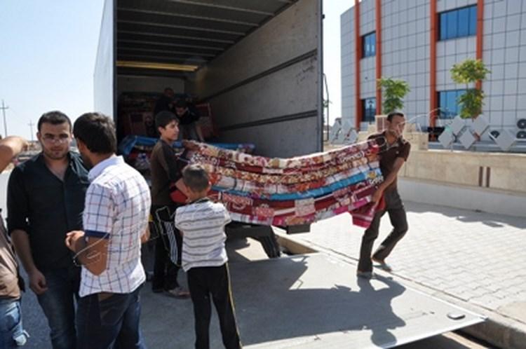 إئتلاف إغاثي يوجه نداء استغاثة لإيواء النازحين من جنوب مدينة الحديدة