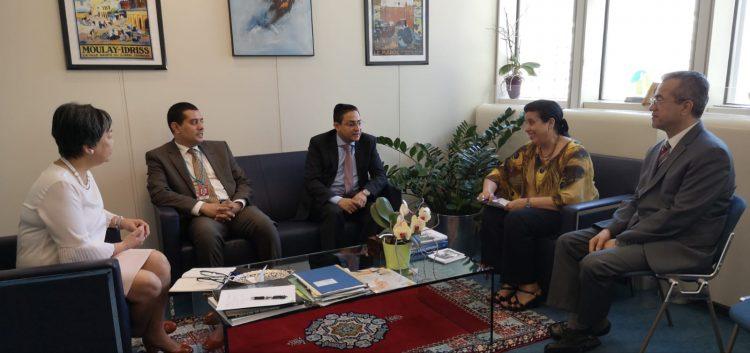 الوكالة الدولية للطاقة الذرية تعلن اعتزامها المساهمة في إنشاء مركز لعلاج السرطان بالإشعاع في عدن