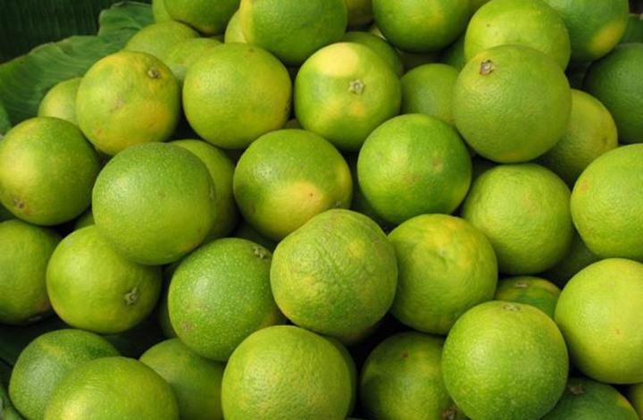 """""""الليمون الحلو"""" يعتني بالبشرة.. خمس وصفات مهمة"""