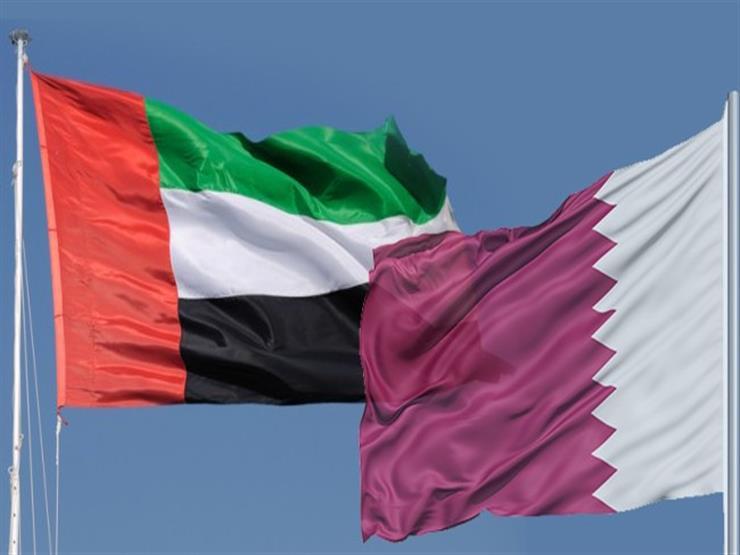 قطر والإمارات في اليمن.. تطابق ألوان القطط البرية