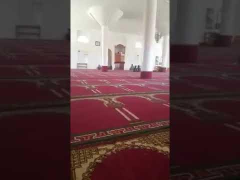 """طائفية المليشيات تتسبب بعزوف المصلين عن مساجد صنعاء """"فيديو"""""""