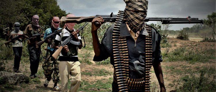 """الصومال.. القوات الحكومية تقتل 25 من حركة """"الشباب"""" في عملية أمنية"""