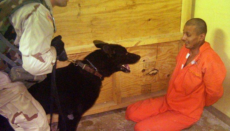 """""""Shakira"""".. the dog used by UAE to torture Yemenis"""
