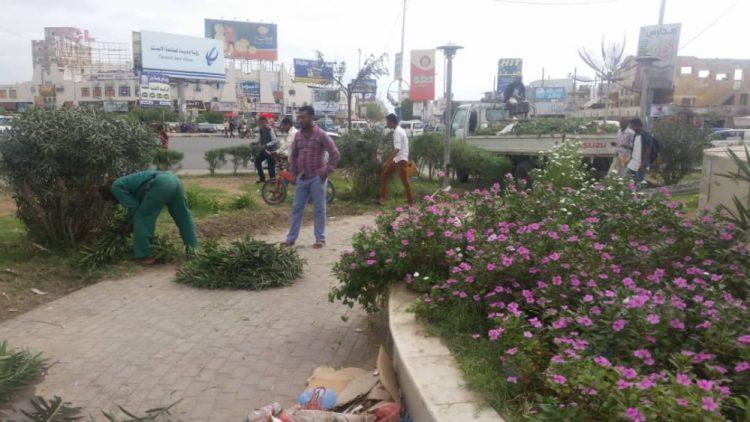 تزيين دوارات وشوارع عدن بالزهور والأشجار