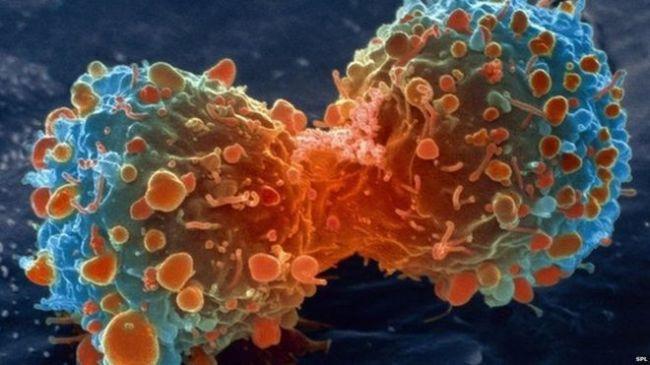 علماء يبتكرون تقنية جديدة قد تسهم في علاج أمراض كالسرطان
