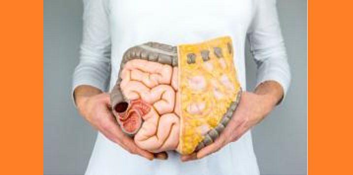 تشخيص طبي لسرطان الأمعاء… ماهي عوارضه؟ ما عدد المصابين به؟
