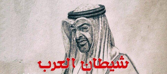 رسالتي إلى محمد بن زايد
