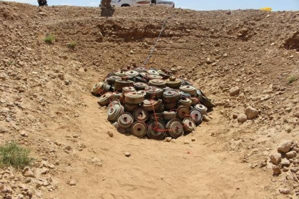 الفرق الهندسية تتلف أكثر من 1200 لغماً أرضيا زرعتها مليشيا الحوثي في الجوف