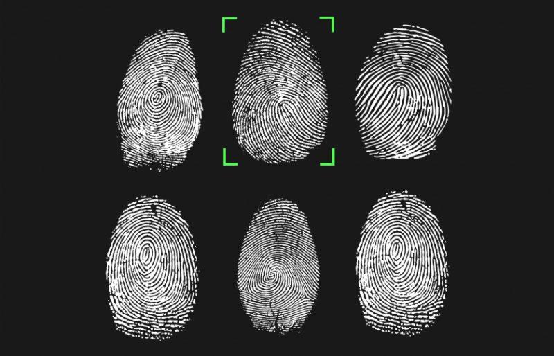 علماء يكشفون معلومات جديدة عن استخداماته.. لماذا لدينا بصمات أصابع؟