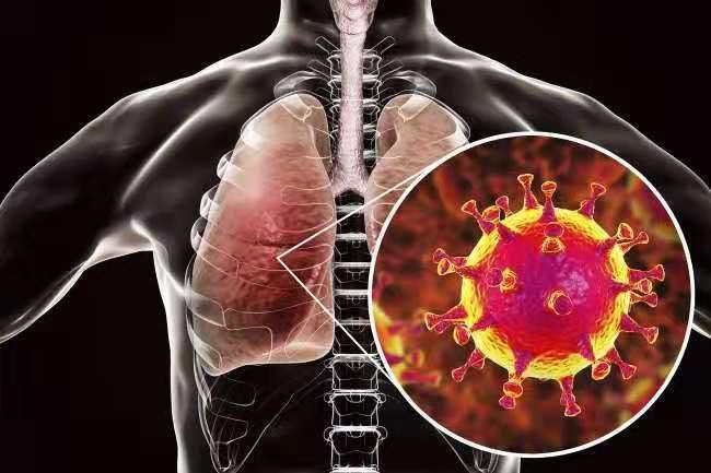 منها اليمن.. دراسة تحدد الشعوب الآسيوية الأكثر حساسية واستجابة لفيروس كورونا