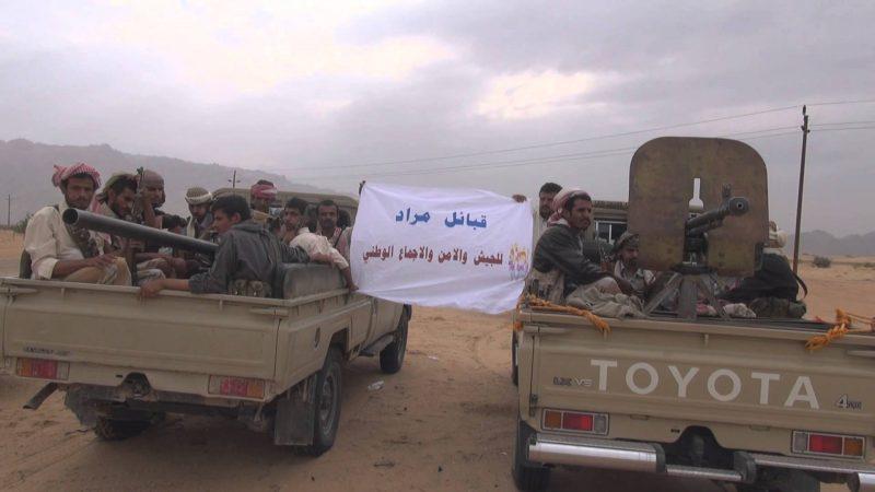 قبائل مراد تصدر بيان هام وتهدد بسحب ابنائها من جبهات القتال.. (نص البيان)