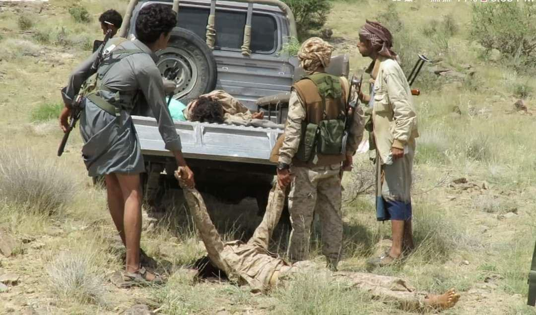مصرع عشرات الحوثيين بنيران الجيش الوطني جنوب محافظة مأرب
