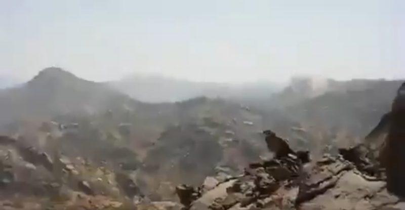 هام.. قوات الجيش الوطني تتقدم في جبهات مأرب والجوف
