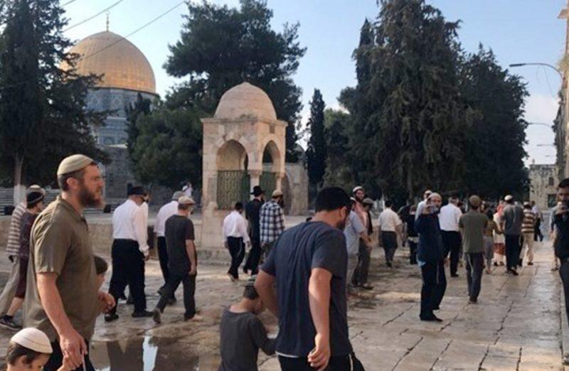 تحت حراسة مشددة من شرطة الاحتلال.. عشرات المستوطنين يقتحمون المسجد الأقصى
