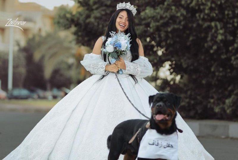 """المصرية هبة مبروك تثير السخرية بزفافها من """"كلب"""" .. ودار الإفتاء تصدر تعليق هام"""