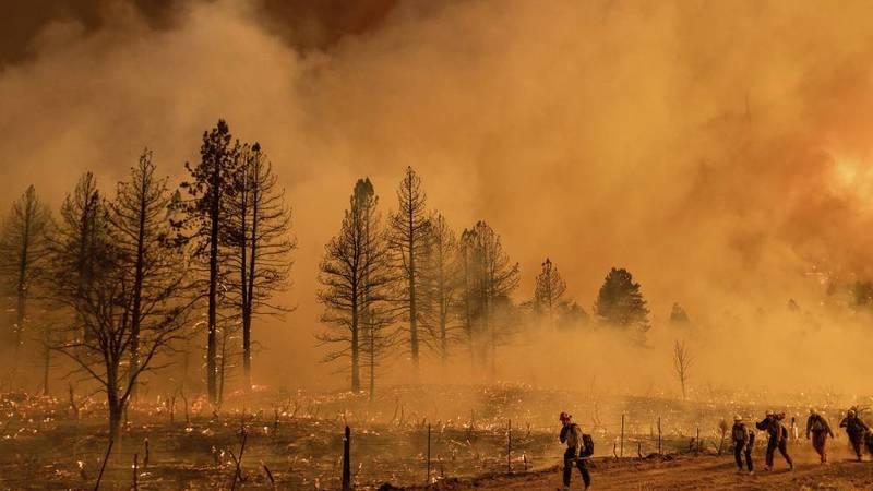 حرائق في غابات شاسعة بأمريكا وكندا بسبب موجة الحر